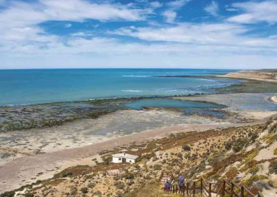 Desarrollo del Catálogo de Nuevos Productos Turísticos para la Captación de Inversión Privada en el Corredor Costa Patagónica Austral